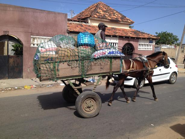 Le transport au Sénégal, c'est aussi les voitures à cheval, très présentes dans certains quartiers de Dakar / Horse carriages are quite common in Senegal, even in Dakar