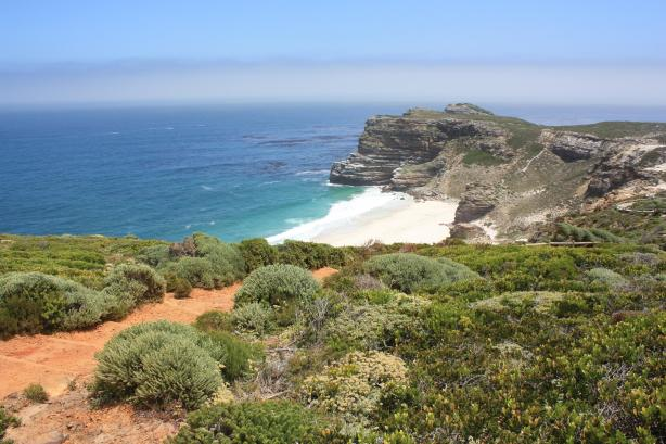 Le Cap de Bonne espérance / The Cape of Good Hope